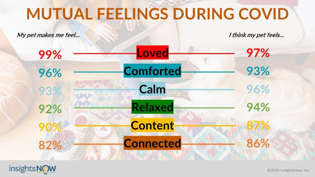 Webinar 44 Pet - D7 Live Presentation Mutual Feelings